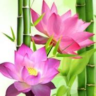 Цветок лотоса 10 мл