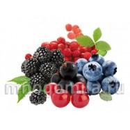 Дикие ягоды 10 мл
