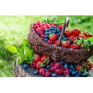 Лесные ягоды 10 мл