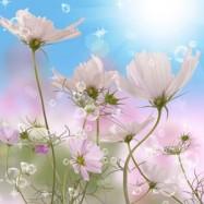 Апрельские первоцветы 10 мл