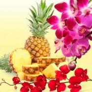 Ананас и орхидея 10 мл