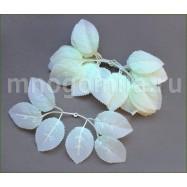 Листья для роз белые, под стебель