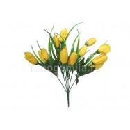 Тюльпаны жёлтые